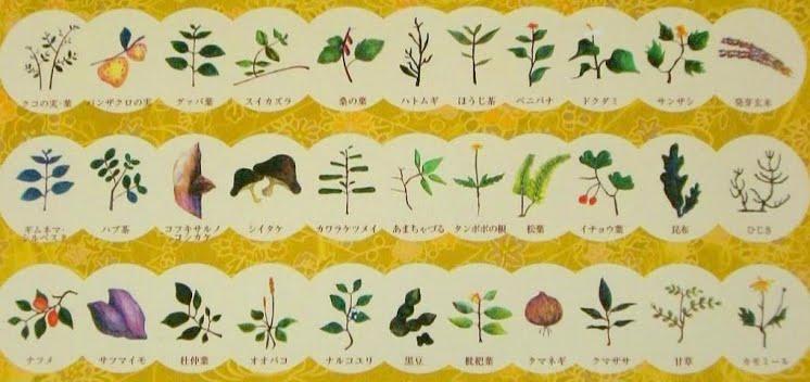 天然力茶に配合された33種の自然草