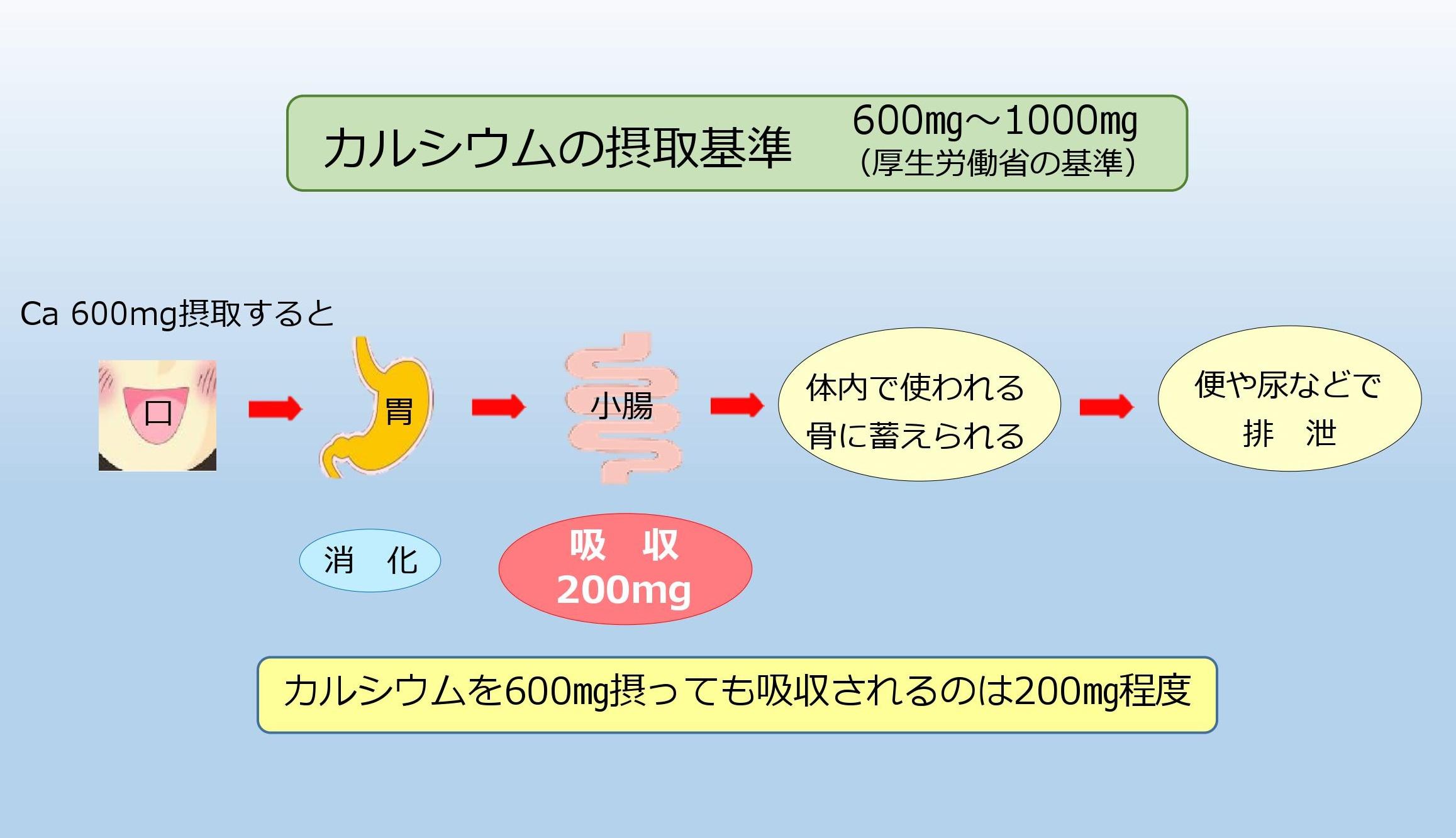 カルシウムの摂取基準 イメージ